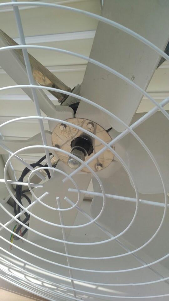 Quạt hút thông gió công nghiệp dạng loa